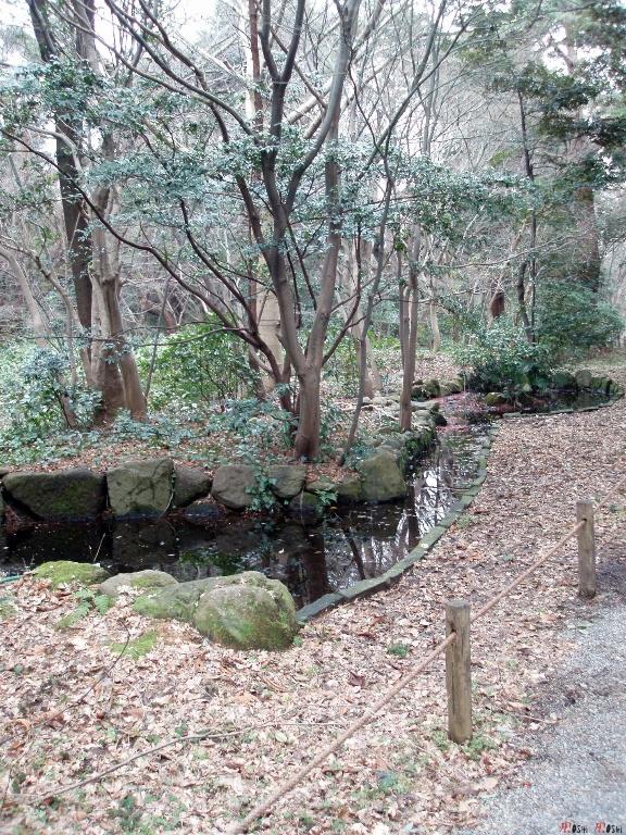 chateau-kanazawa-hiver-arbre-jardin-2