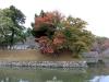 chateau-hikone-douves-momiji