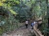 chateau-hikone-montee-access