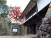 chateau-hikone-porte-momiji