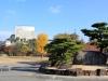 himeji-chateau-jardin-pierre-donjon-travaux