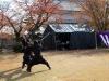 himeji-chateau-spectacle-ninja-combat-katana