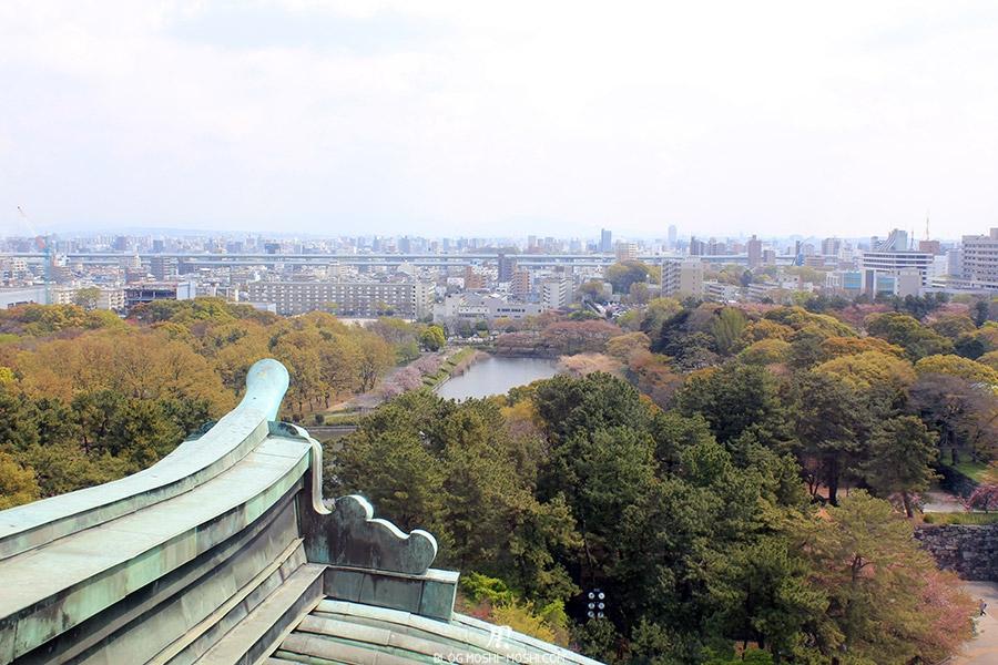 chateau-nagoya-aichi-vue-toit-ville-cerisiers-sakura
