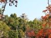 okayama-chateau-corbeau-saison-momiji-apercu-chateau