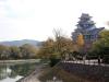 okayama-chateau-corbeau-saison-momiji-en-hauteur-douve-cote