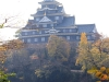 okayama-chateau-corbeau-saison-momiji-face-eau