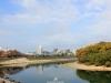 okayama-chateau-corbeau-saison-momiji-vue-ville