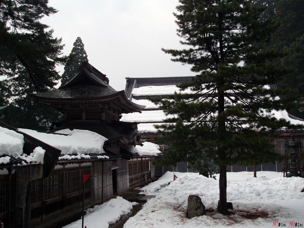 eihei-ji-jardin-sommet