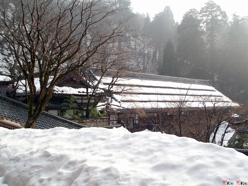eihei-ji-toits-neige-3