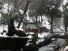 eihei-ji-jardin-promenade-torrent