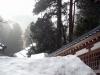 eihei-ji-toits-neige