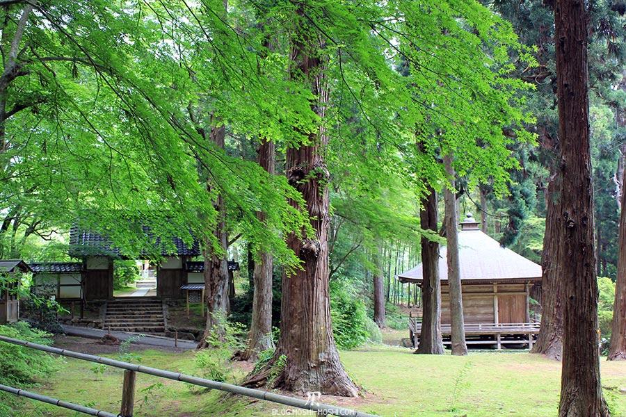 hiraizumi-patrimoine-unesco-chuson-ji-batiments-travers-foret