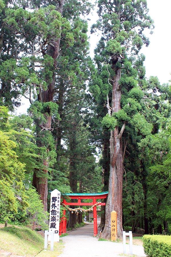 hiraizumi-patrimoine-unesco-chuson-ji-hakusan-jinja-torii-entree