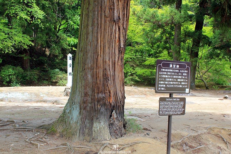 hiraizumi-patrimoine-unesco-motsu-ji-ruines-hall-lecture