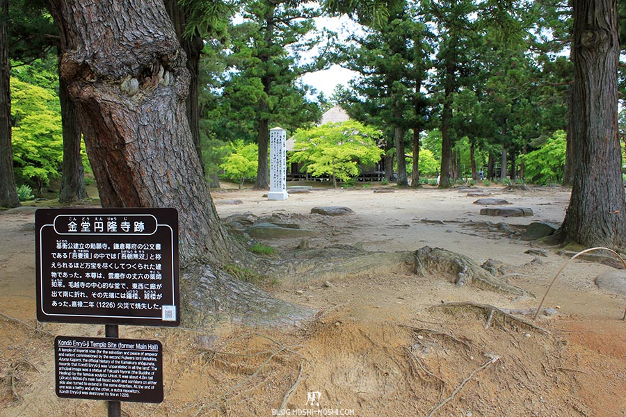 hiraizumi-patrimoine-unesco-motsu-ji-ruines-kondo-temple-enryu-ji