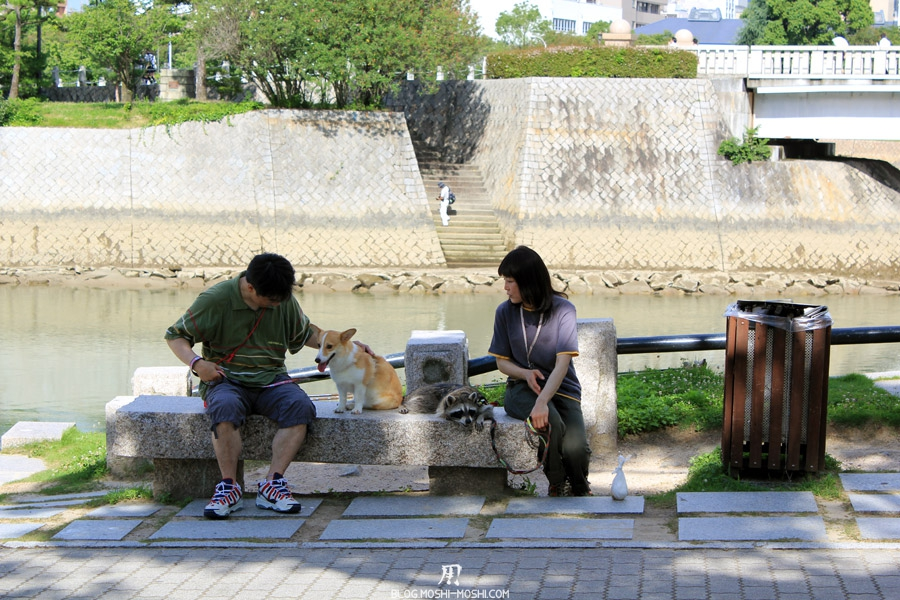 hiroshima-couple-chien-blaireau