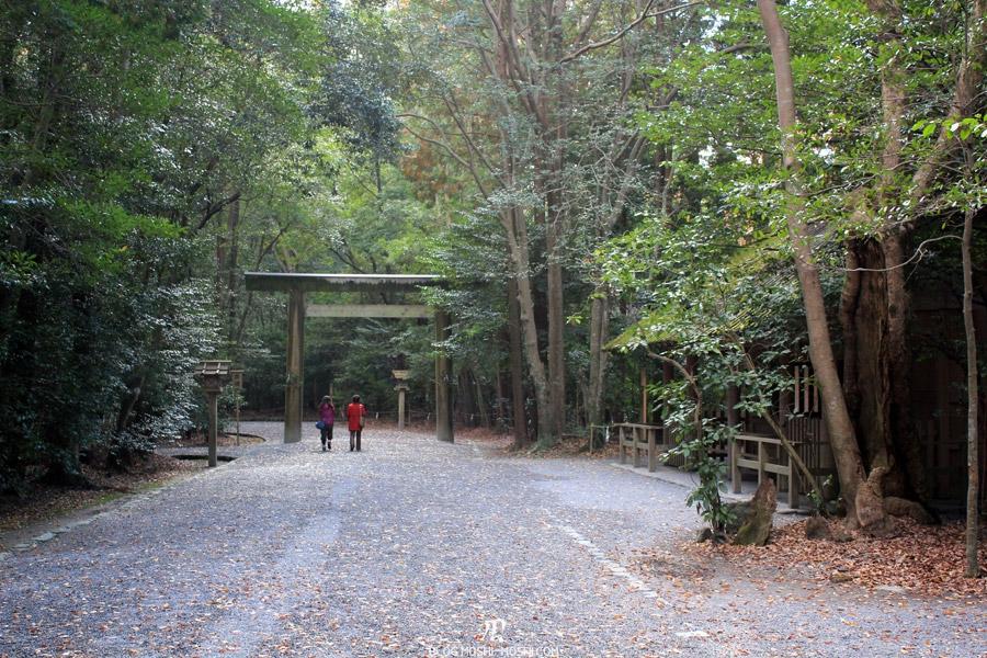 ise-jingu-sanctuaire-exterieur-geku-torii-bois-chemin-foret