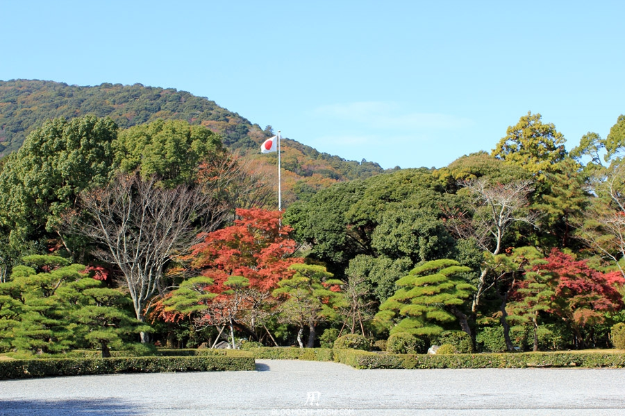 ise-jingu-sanctuaire-interieur-naiku-momiji-japon