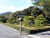ise-jingu-sanctuaire-interieur-naiku-allee-entree-vegetation