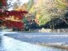 ise-jingu-sanctuaire-interieur-naiku-riviere-isuzu-verges-momiji