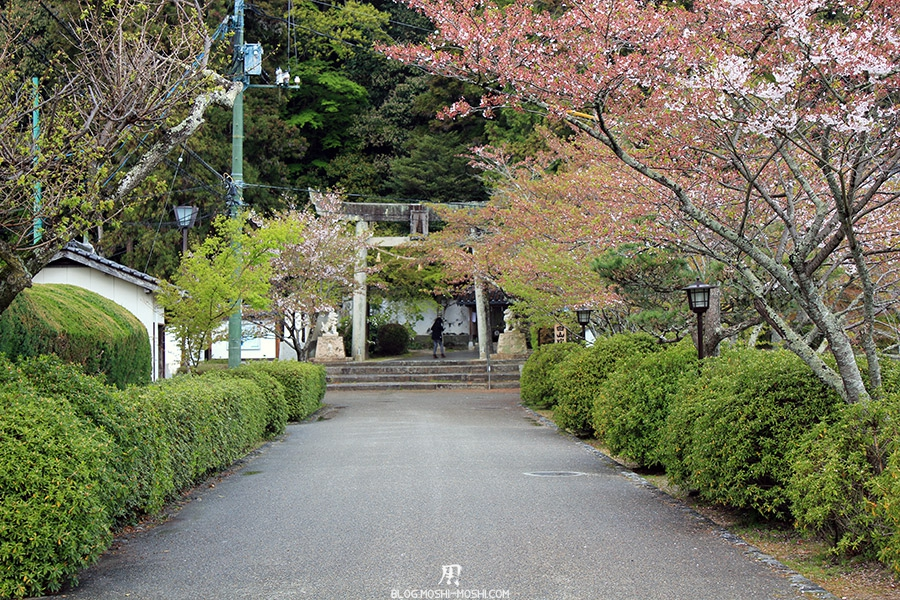 iwakuni-yamaguchi-allee-entree-sanctuaire-cerisier