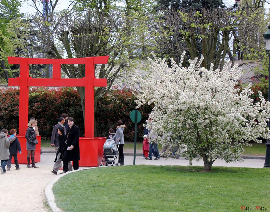 Paris-jardin-japonais-parade-okinawa-mini-torii-sakura