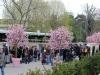 Paris-jardin-japonais-les-stands