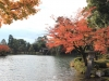 kanazawa-kenrokuen-saison-momiji-etang-kasumigaike-lanterne-celebre-vue-jardin