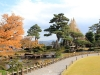 kanazawa-kenrokuen-saison-momiji-riviere-pas-japonais-pin