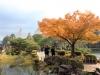kanazawa-kenrokuen-saison-momiji-yukitsuri-en-place