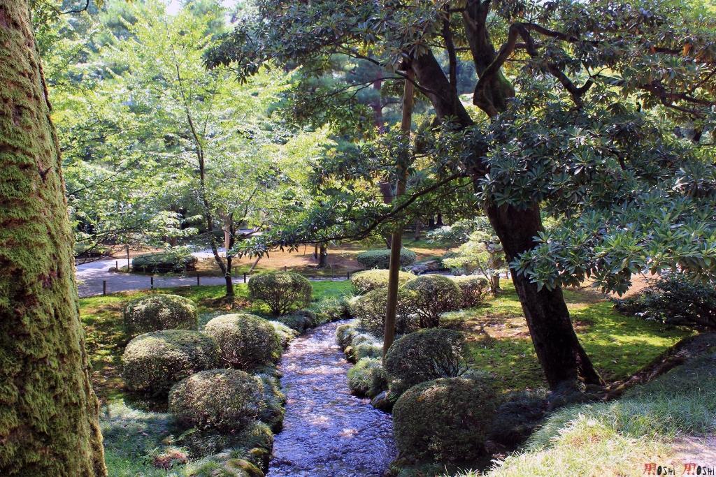 parc-kenrokuen-ete-mousse-eau