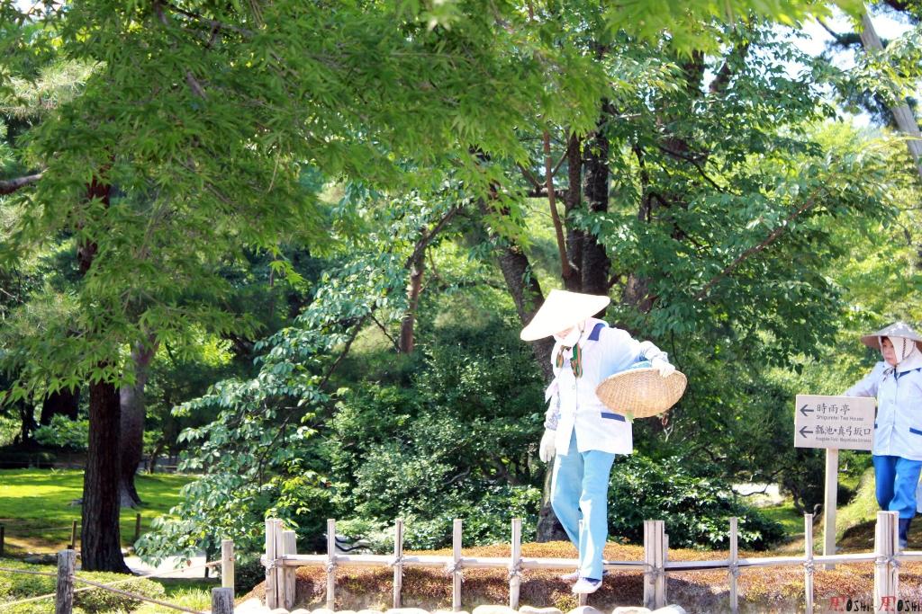 parc-kenrokuen-ete-soins-parc