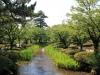 parc-kenrokuen-ete-ruisseau