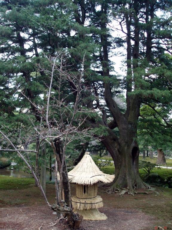 parc-kenrokuen-hiver-abris-oiseau