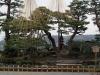 parc-kenrokuen-hiver-yukitsuri-fond-montange
