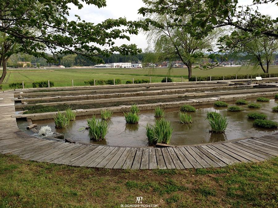Komatsu-parc-kibagata-lac-kiba-jardin-aquatique