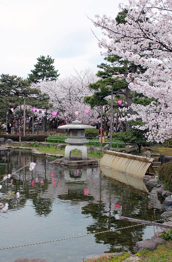 komatsu-parc-rojyou-matsuri-saison-sakura-etang-grosse-lanterne-pierre