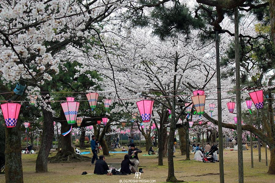 komatsu-parc-rojyou-matsuri-saison-sakura-hanami-cerisier-blancs