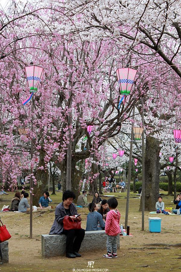 komatsu-parc-rojyou-matsuri-saison-sakura-hanami-cerisier-tombant