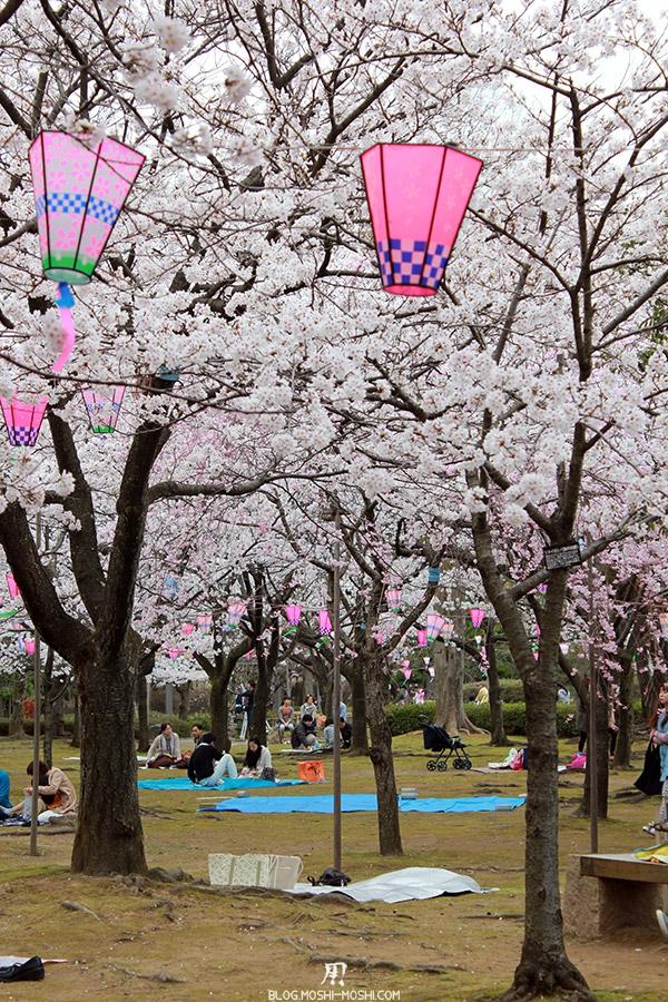 komatsu-parc-rojyou-matsuri-saison-sakura-hanami-cerisier-vert