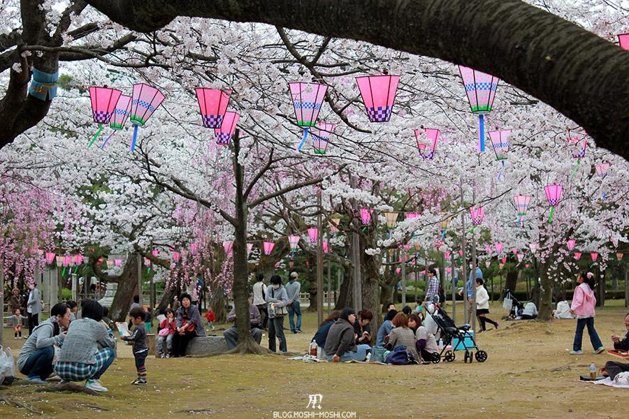komatsu-parc-rojyou-matsuri-saison-sakura-hanami-tunnel-cerisier