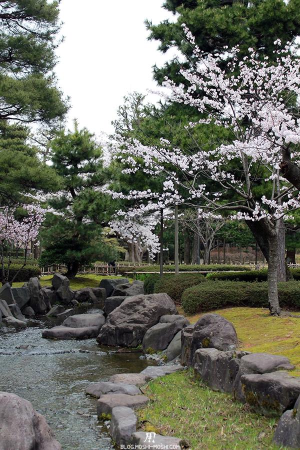 komatsu-parc-rojyou-matsuri-saison-sakura-riviere-cerisier
