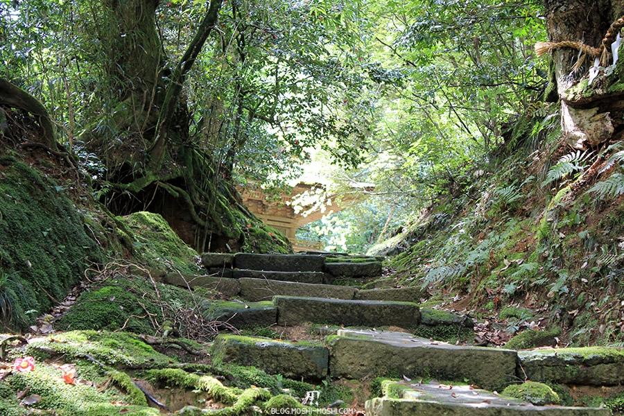 komatsu-temple-natadera-montee-jungle-pagode