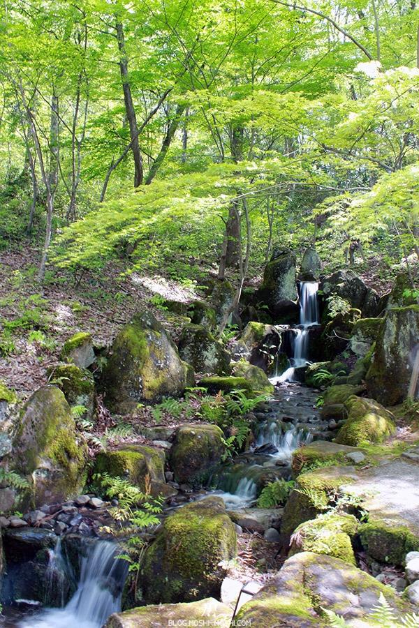 komatsu-yunokuni-no-mori-kodomo-no-hi-petite-cascade