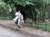 kyoto-aoi-matsuri-sanctuaire-shimogamo-jinja-cavalier-plein-galop-baton-bien-droit
