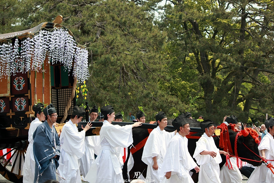 kyoto-aoi-matsuri-palais-imperial-boeuf-tire-charette-sacree
