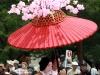 kyoto-aoi-matsuri-palais-imperial-defile-femme-nyoju-furyugasa-fleurs-cerisier-sakura
