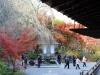 temple-tenryu-ji-kyoto-arashiyama-momiji-priere-kaeru