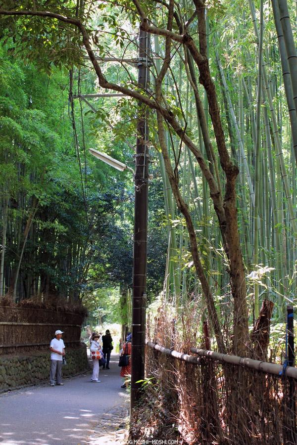 arashiyama-kyoto-foret-bambou