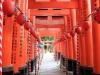 fushimi-inari-taisha-kyoto-chemin-grand-torii-vue-milieu